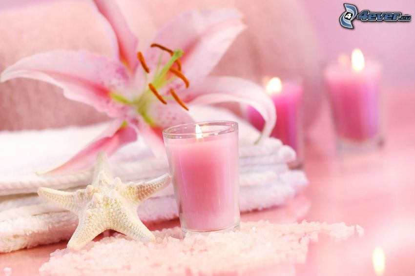 candle, starfish, lily