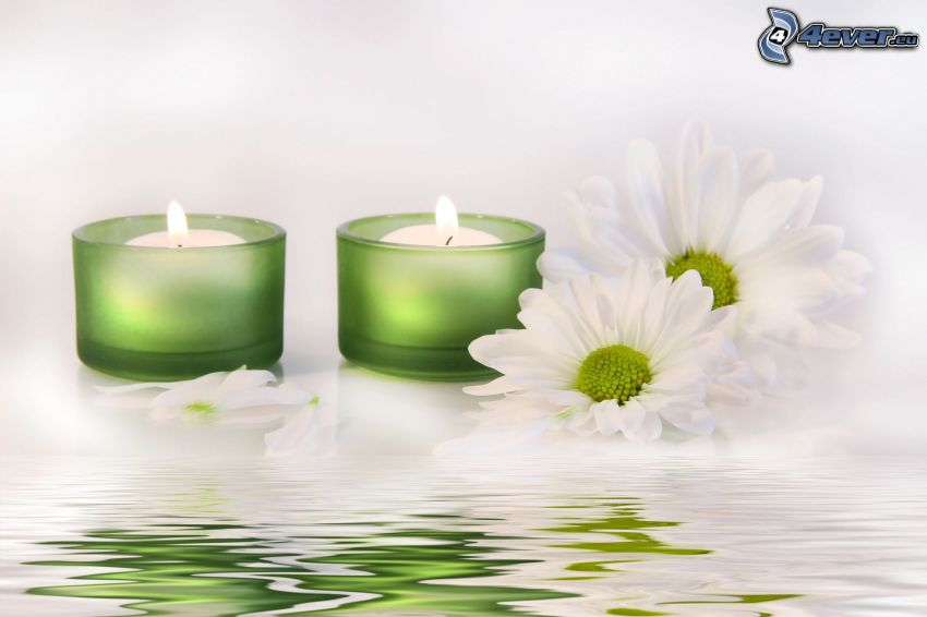 candles, white flowers, water surface