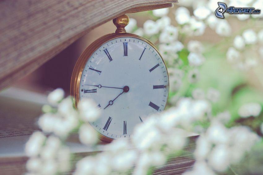 clock, book