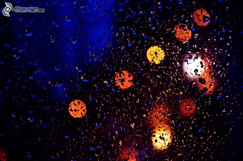 dewy glass, lights