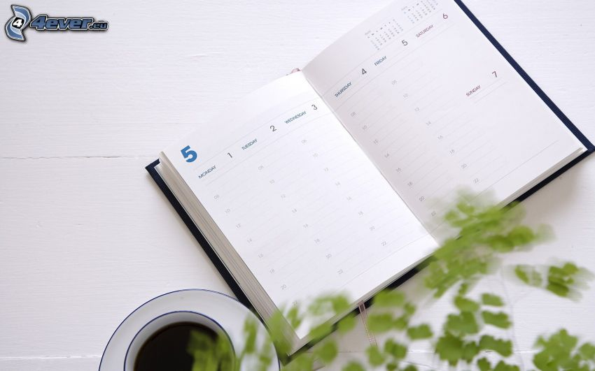 diary, cup of coffee