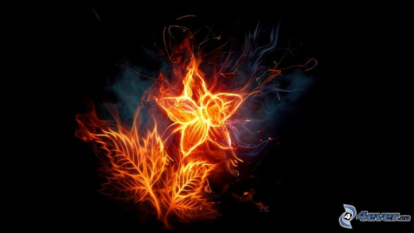 fiery flower, font