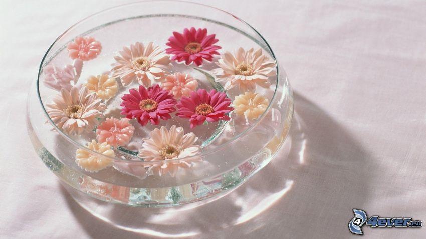 flowers, bowl