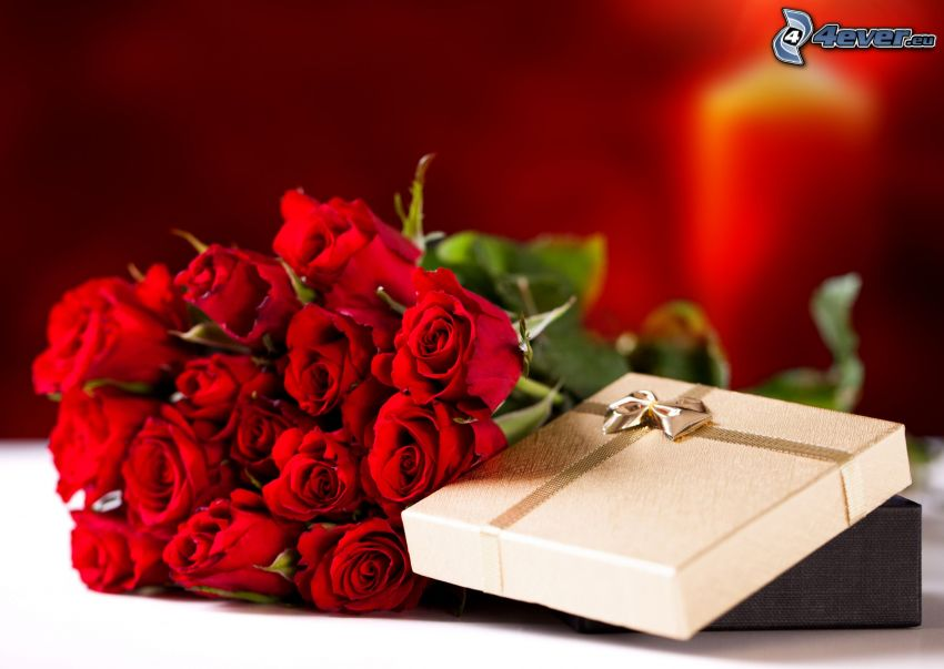 gift, bouquet of roses