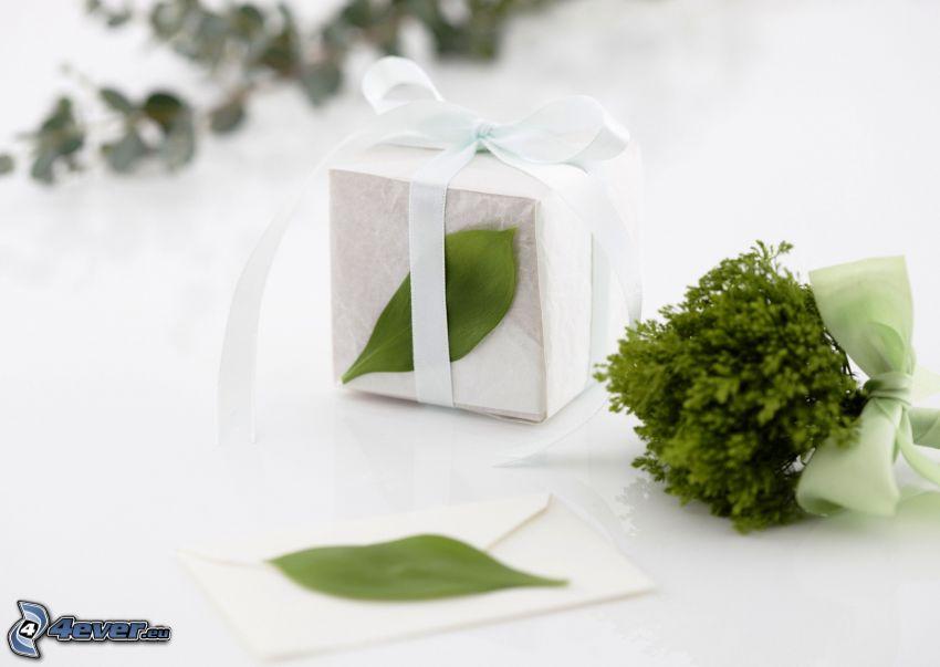 gift, plant