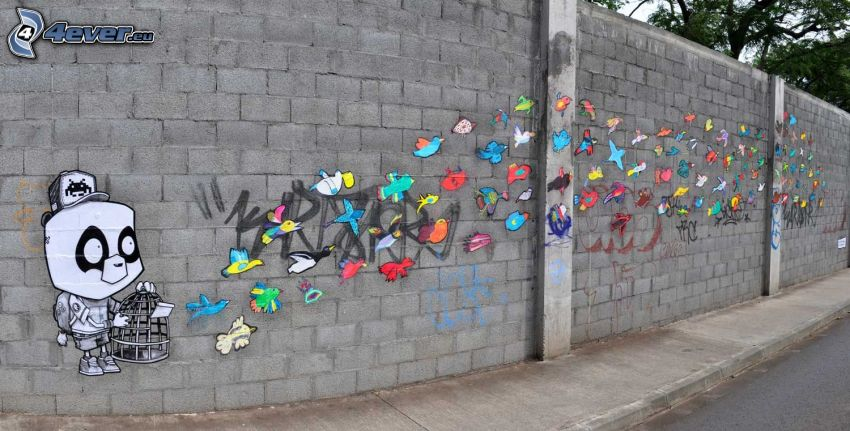 graffiti, flock of birds, wall
