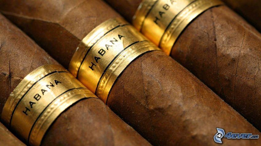 Habana, cigars