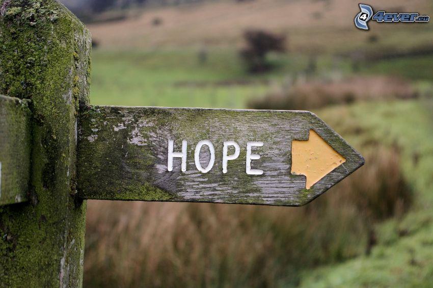 hope, arrow, sign