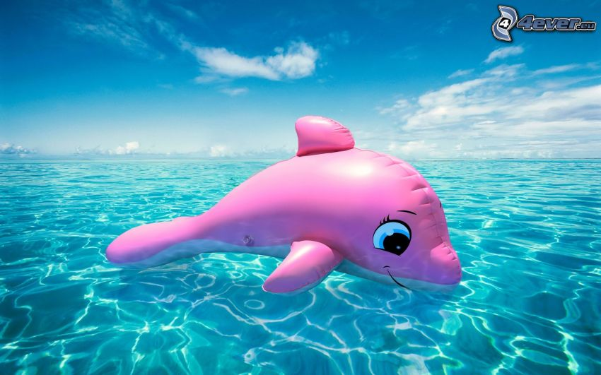 inflatable, dolphin, sea