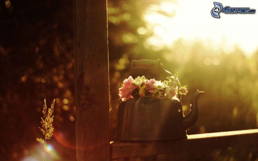 kettle, flowers