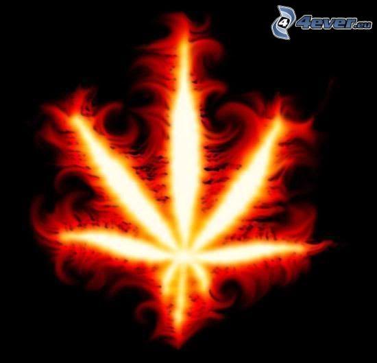 marijuana, fire