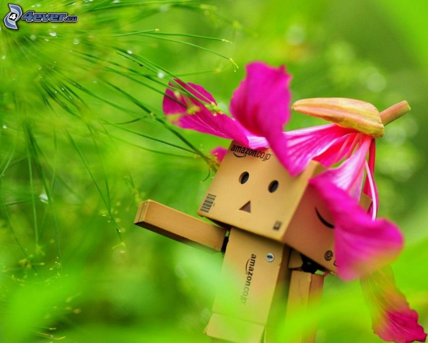 paper robot, greenery, Orchid