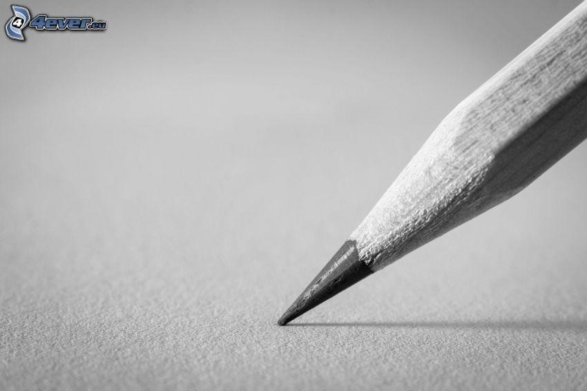 pencil, black and white photo
