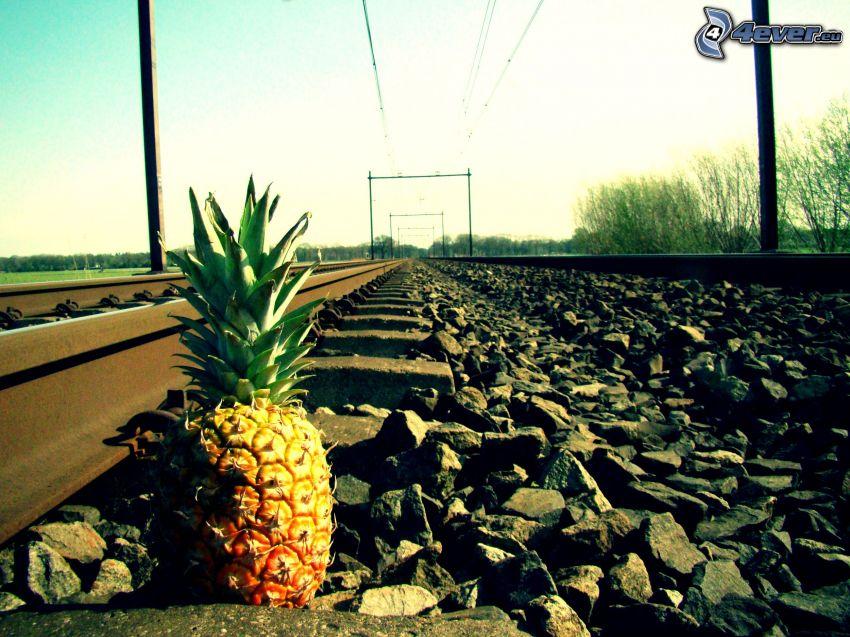 pineapple, rails, rocks