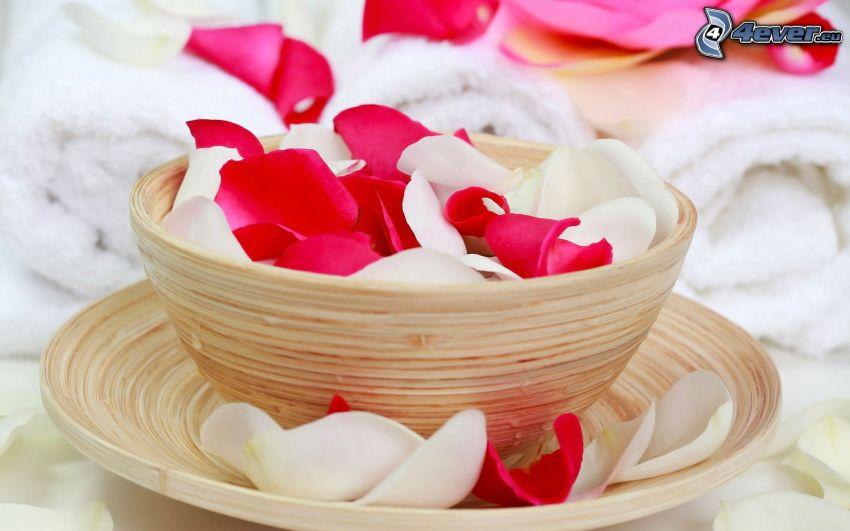rose petals, bowl