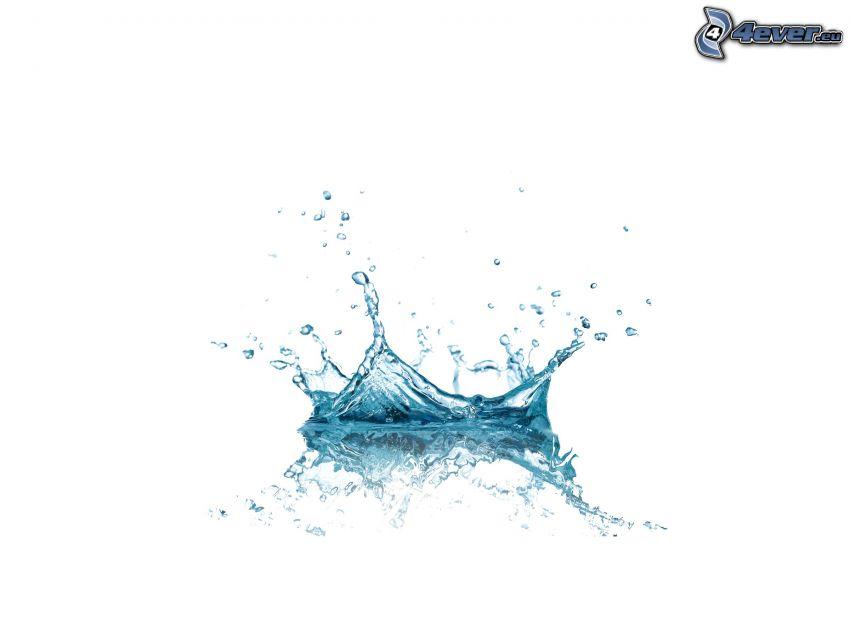 splash, water