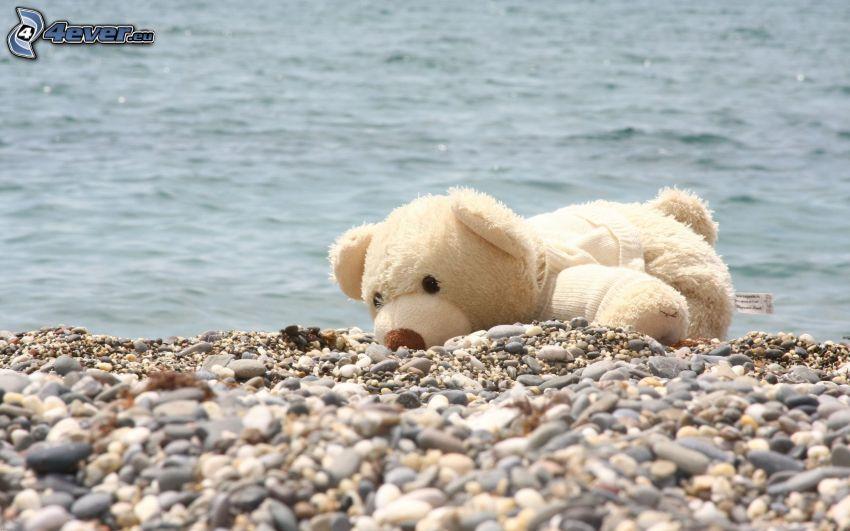 teddy bear, sea, rocky beach