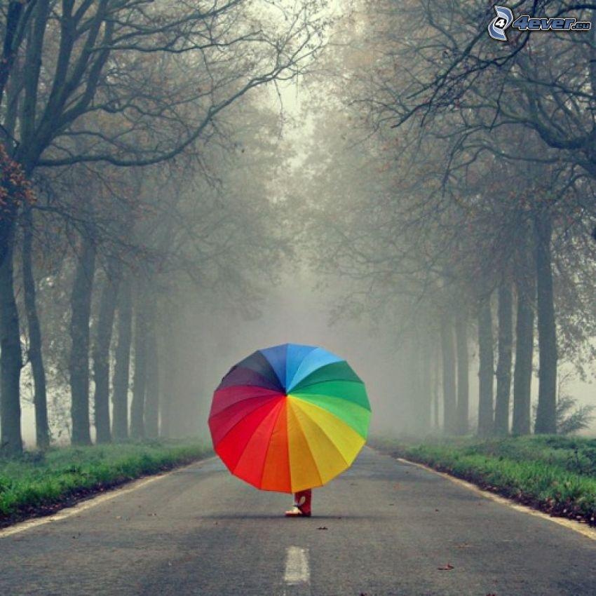 umbrella, rainbow colors, road, avenue of trees, fog