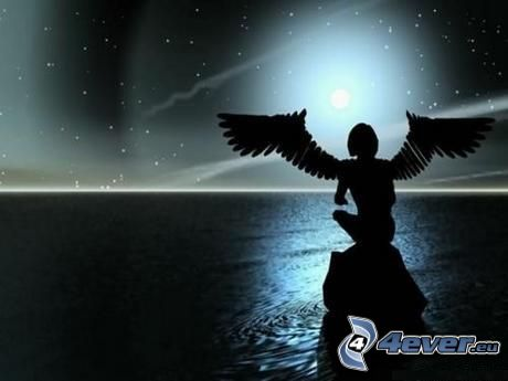 woman silhouette, angel, night