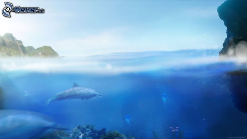 Ecco the Dolphin, sea, dolphins