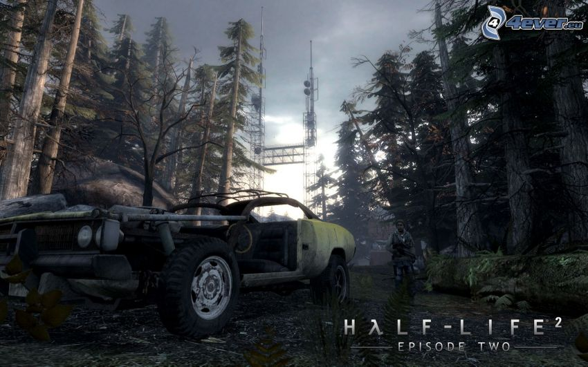 Half-Life 2, forest