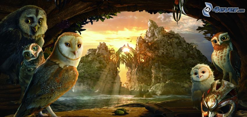 Legend of the Guardians, owls