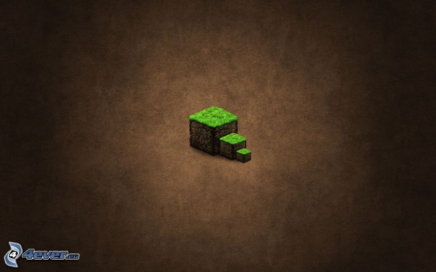 Minecraft, cubes