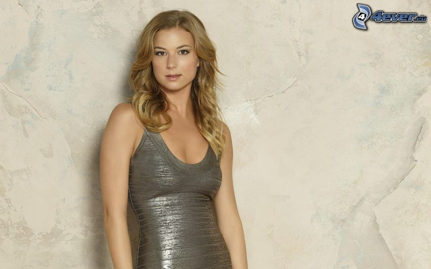 Emily VanCamp, gray dress