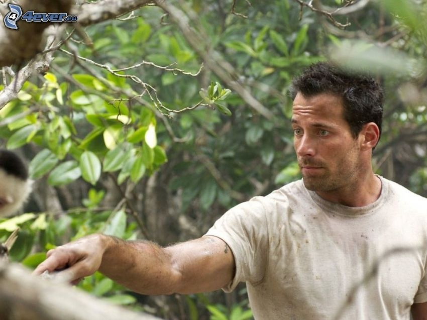 Johnny Messner, tree, green leaves