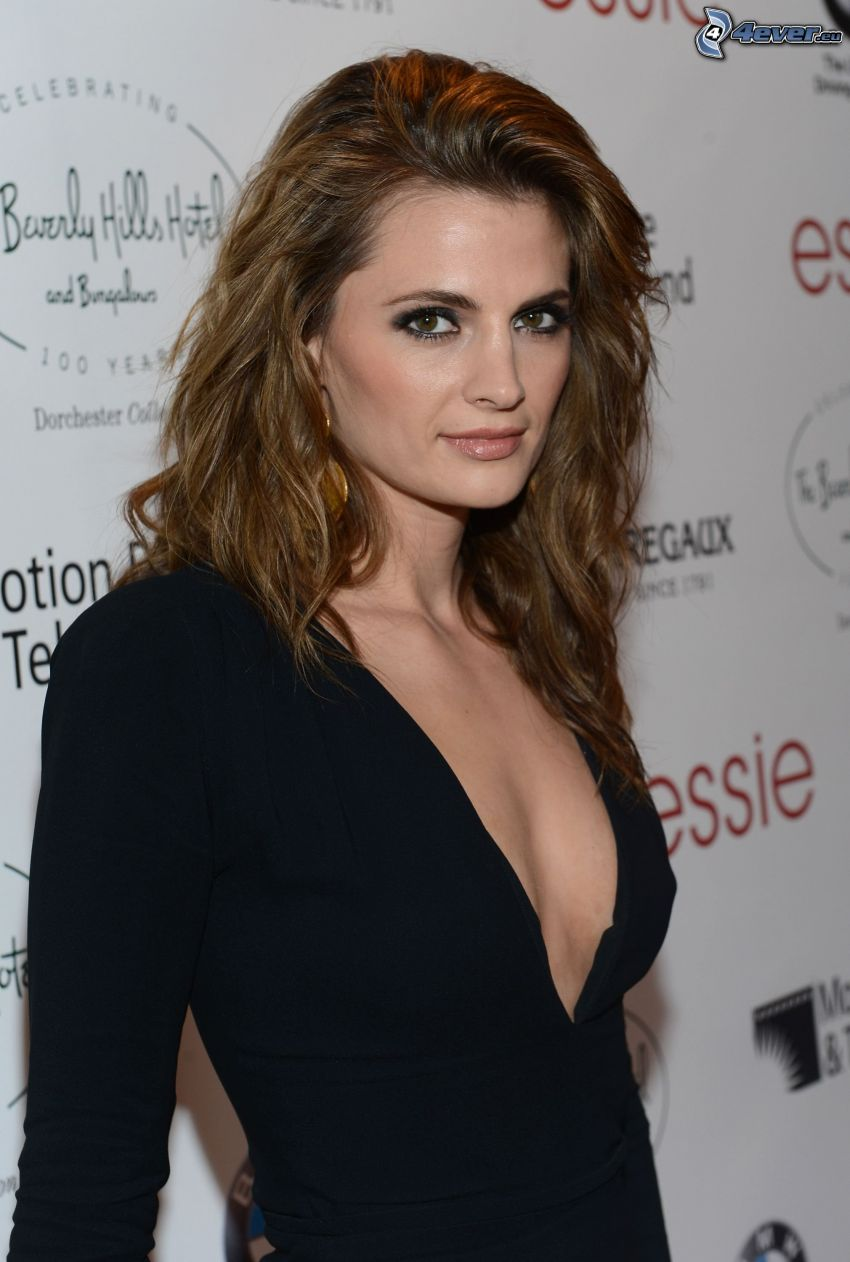 Stana Katic, black dress