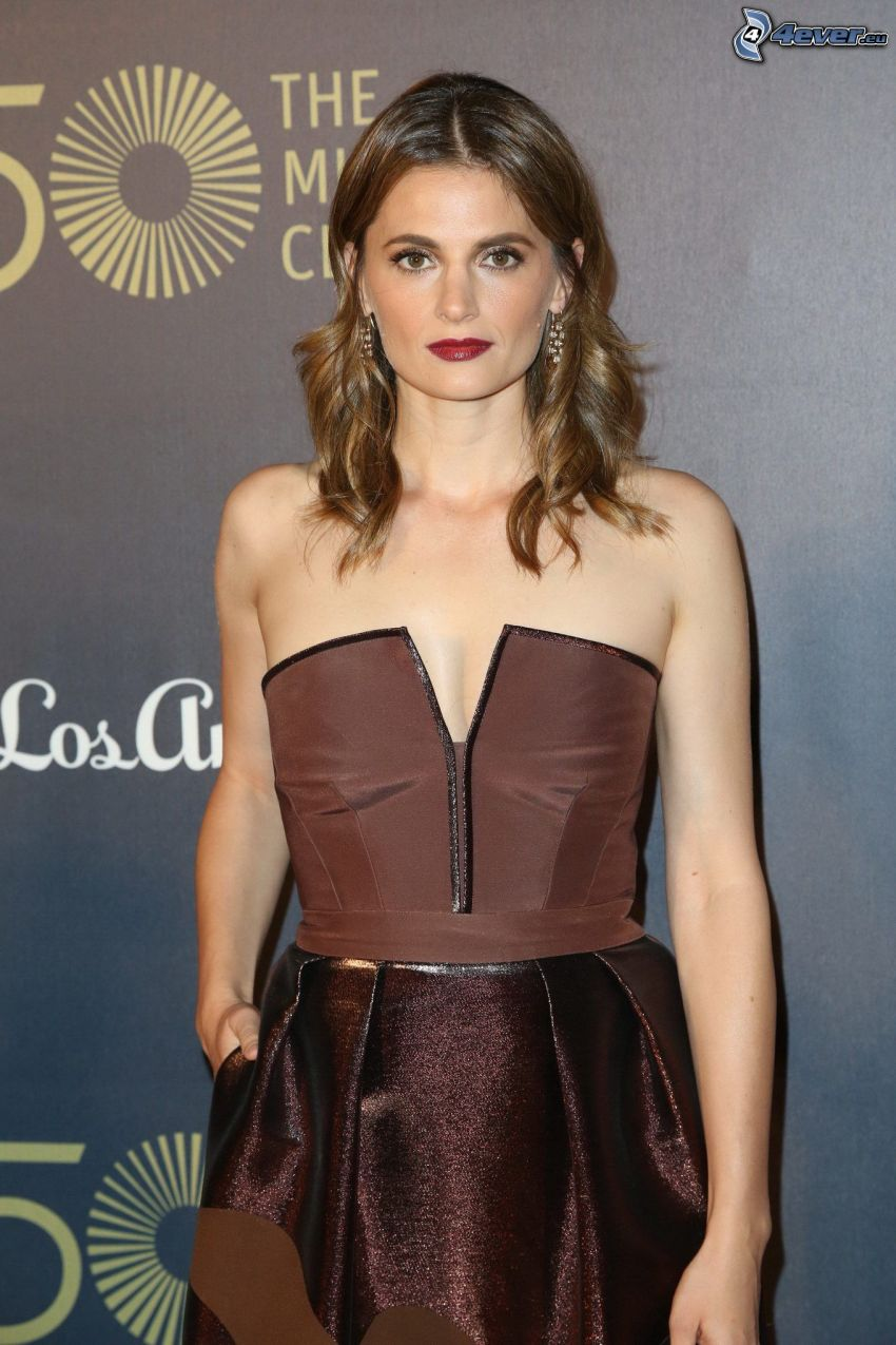 Stana Katic, brown dress