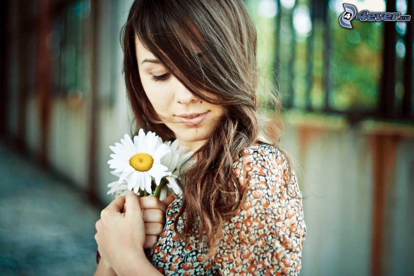brunette, daisies
