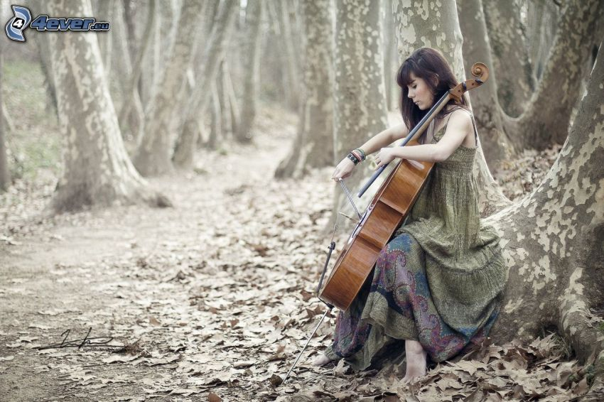 girl playing the cello, forest