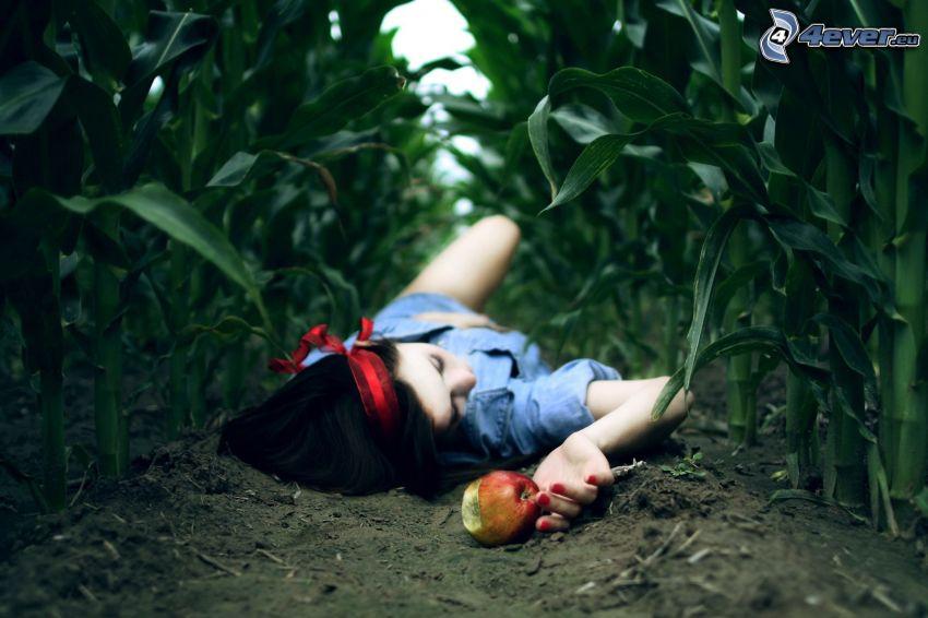 Snow White, apple, corn field