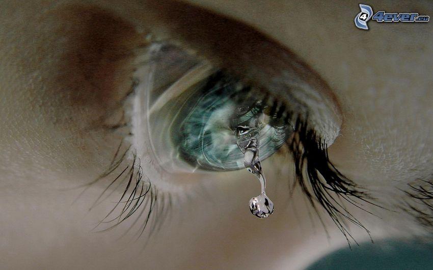 blue eye, eyelash, tears