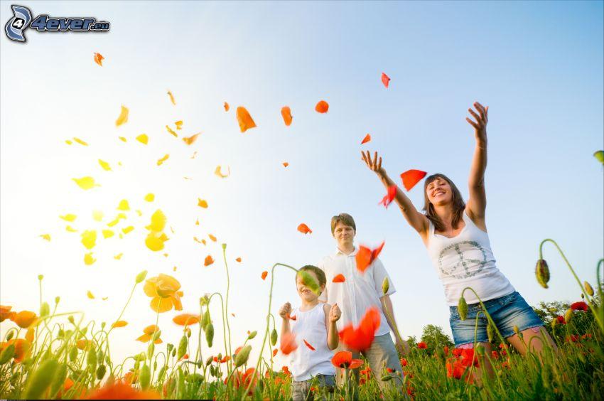 children, meadow, papaver rhoeas