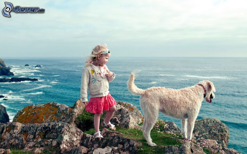 girl, dog, sea, rock