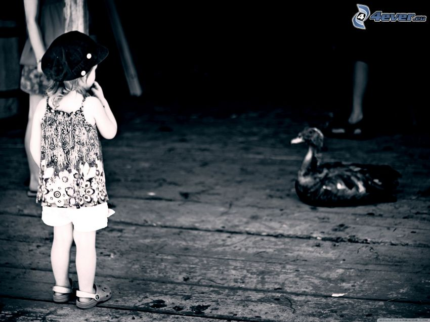 girl, duck, black and white