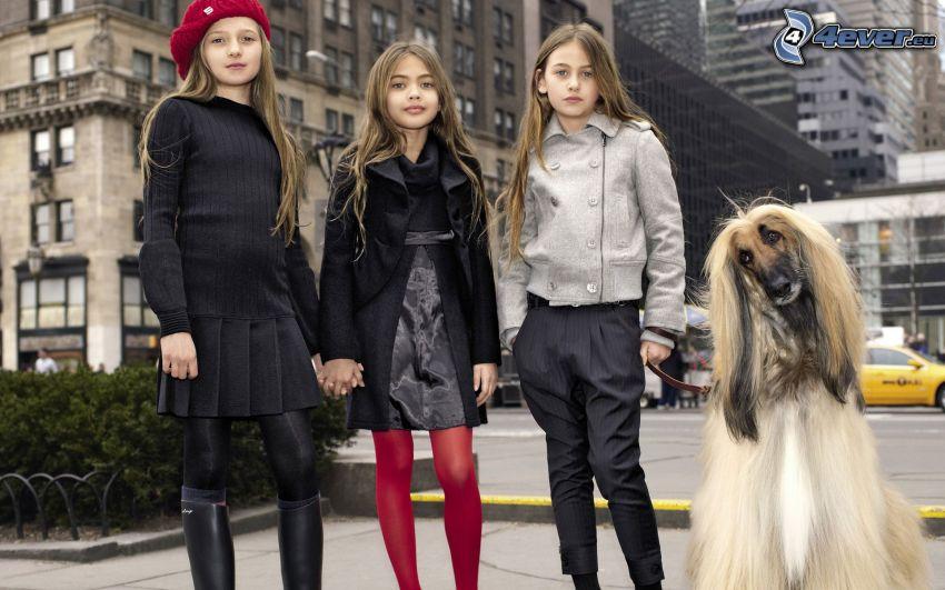 girls, models, dog