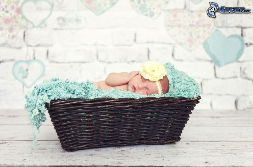 sleeping baby, basket