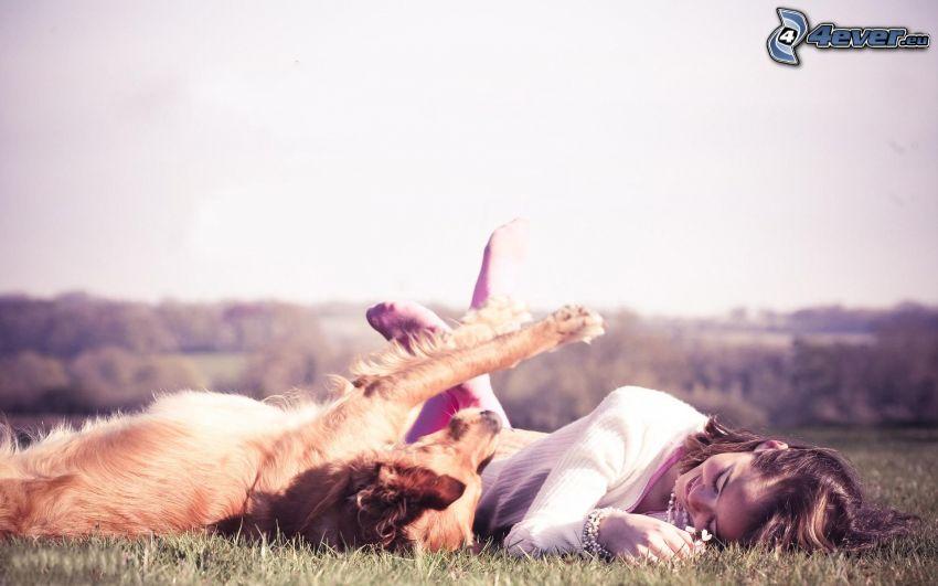 girl on the meadow, cocker spaniel, rest
