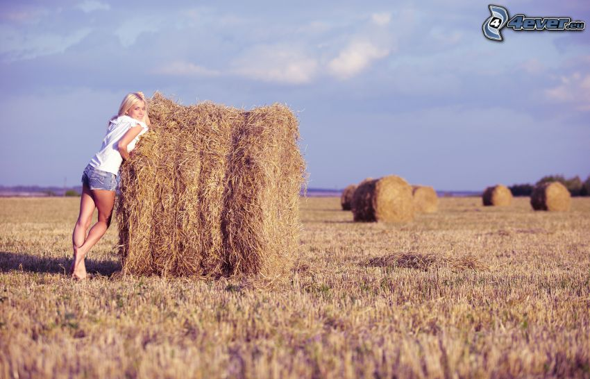 hay after harvest, girl on field, blonde