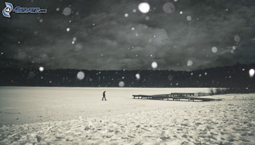 man, loneliness, frozen lake, wooden pier, snow, snowfall, black and white