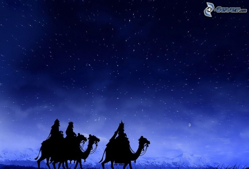silhouettes of people, camels, starry sky