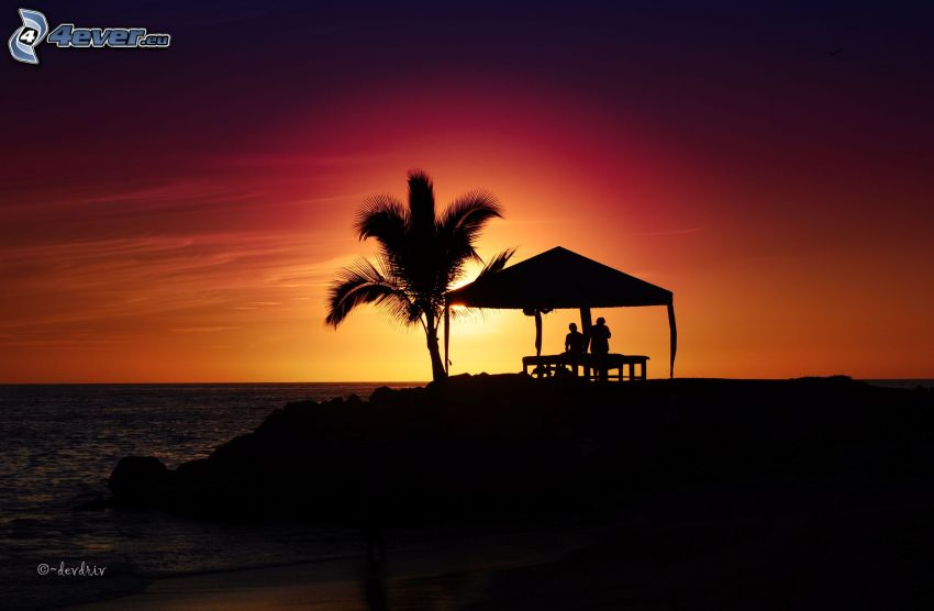sunset over the sea, gazebo, couple, palm tree, silhouette