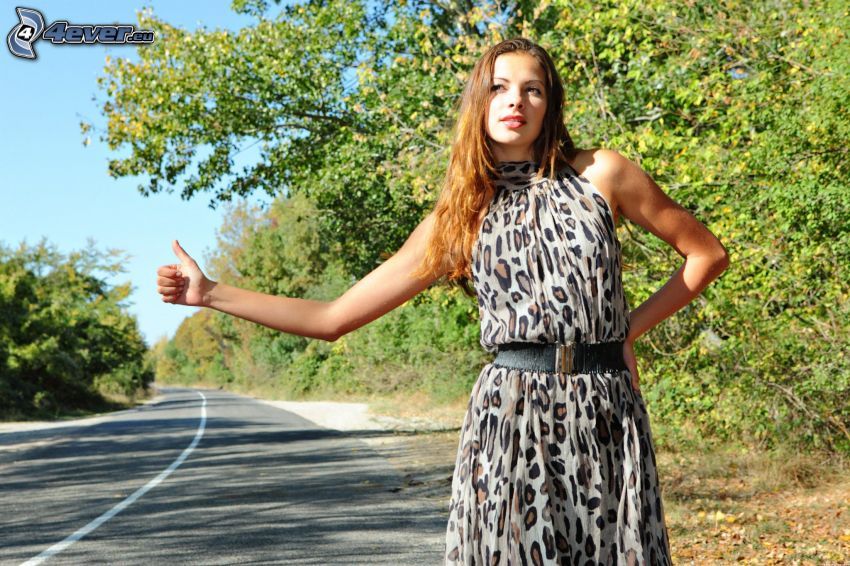 woman, brunette, hitch-hiking, road