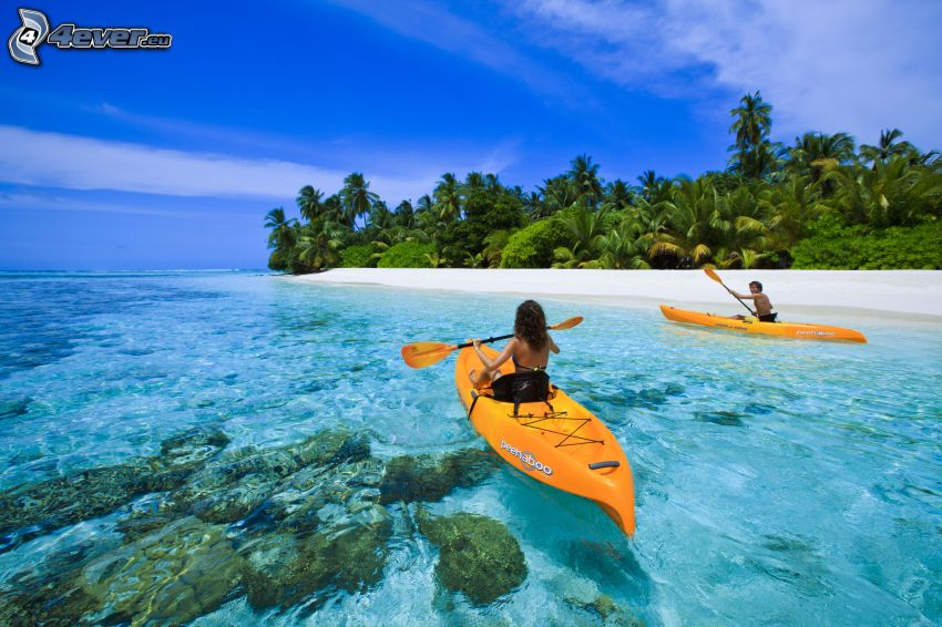 canoe, azure sea, palm trees