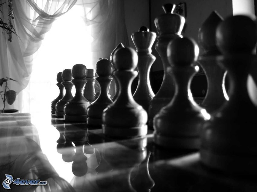 Chess, chess pieces, black and white photo