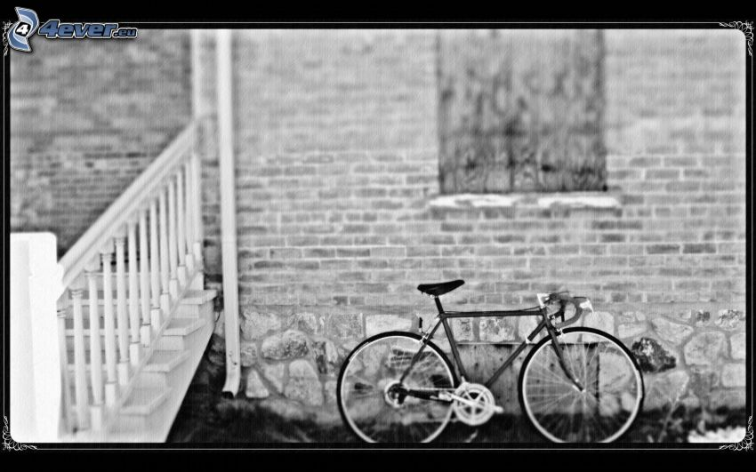 bicycle, black and white photo