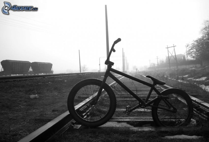 BMX, bicycle, rails, black and white